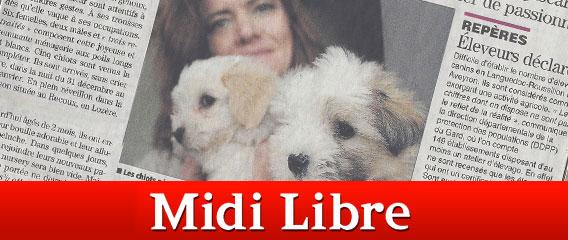Blog Midilibre1
